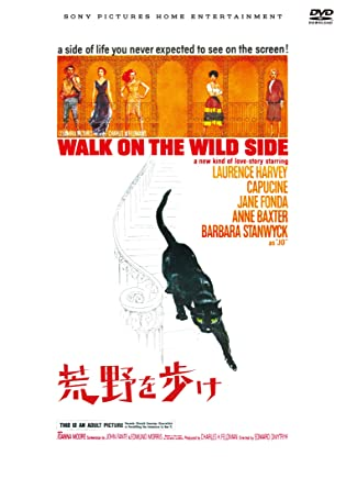 Amazon | 荒野を歩け [DVD] | 映...
