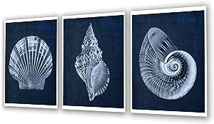 Navy Blue Beach Decor Seashells Wall Art set of 3 Unframed Prints