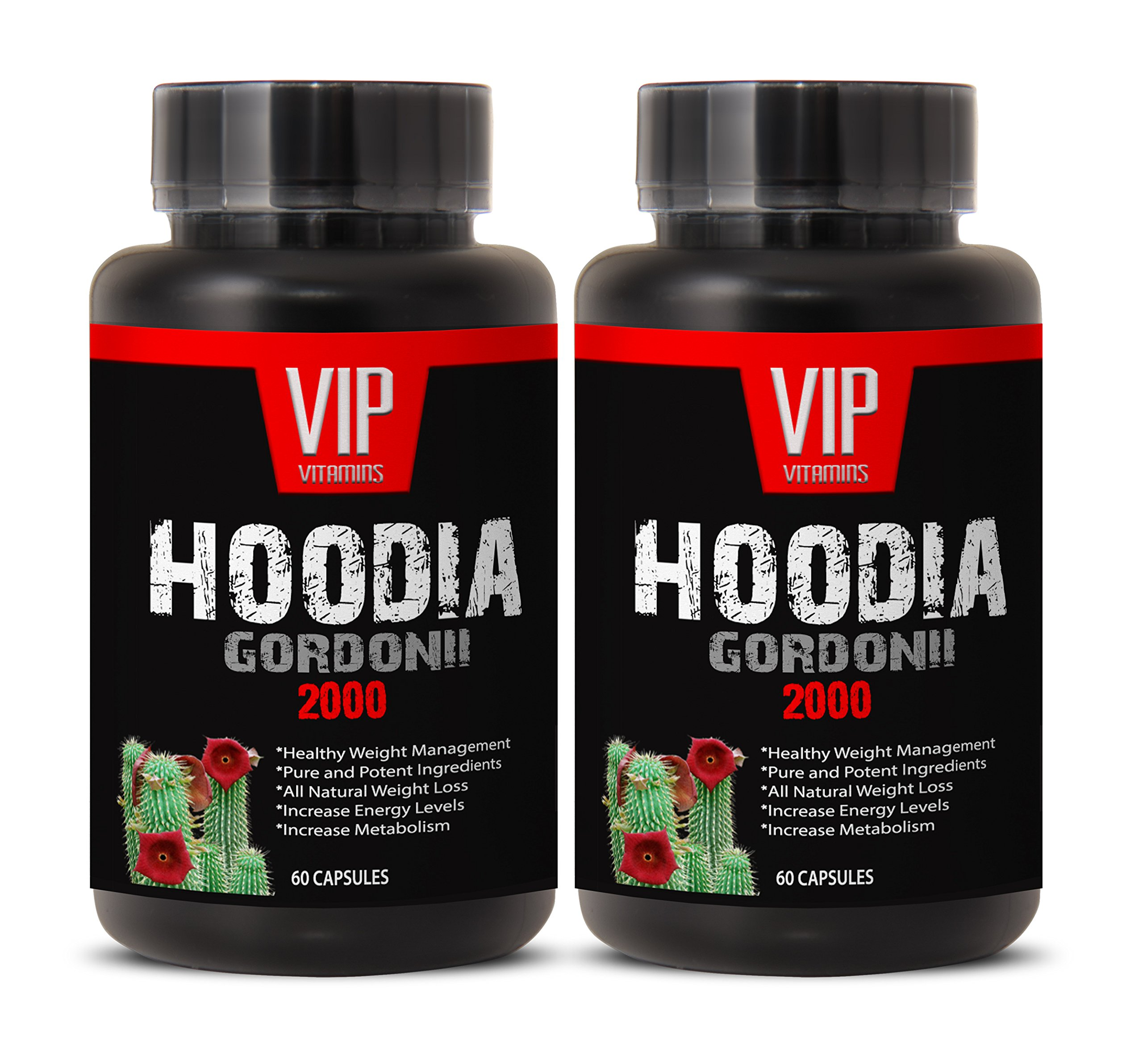 Super Hoodia Gordonii Power Extract- Pure Hoodia Gordonii Extract 2000mg - Hoodia Gordonii Highly Effective Appetite Suppressing (2 Bottles 120 Capsules)