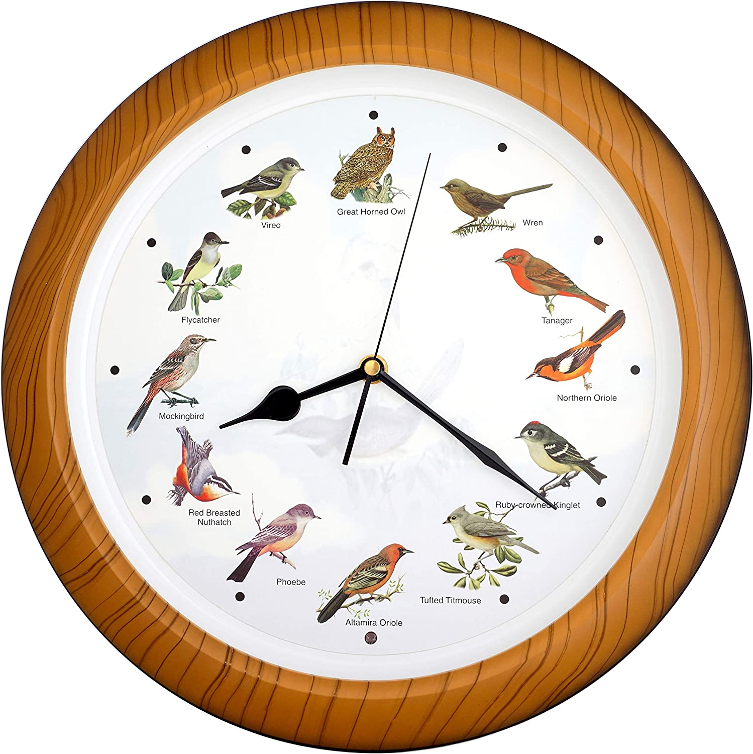 JUSTIME Lovely Collection 14-inch Plays 12 Popular North American Bird's Songs Wall Clock Mantel Clock Home Deco Multicolor(TCBD-OWL-W Wooden Grain)