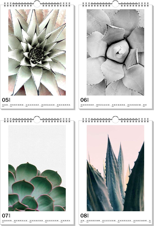 artboxONE Kalender 2020 Wundersch/önes Deutschland Wandkalender A2 Natur