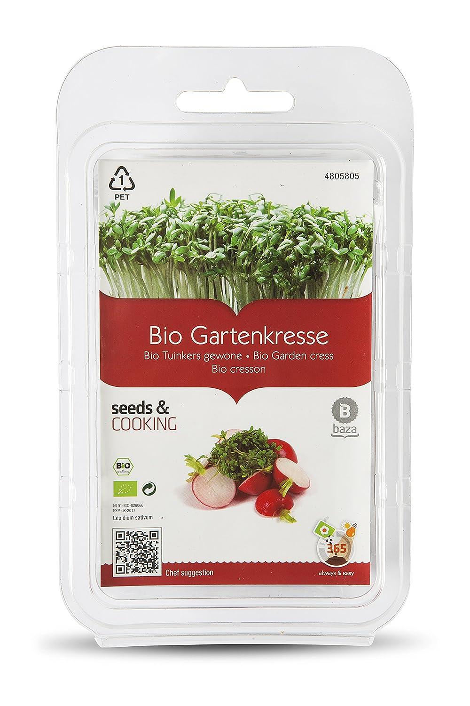 Kit de Cultivo Brotes de Berro BIO ( Semillas Ecologicas Certificadas ) BAZA