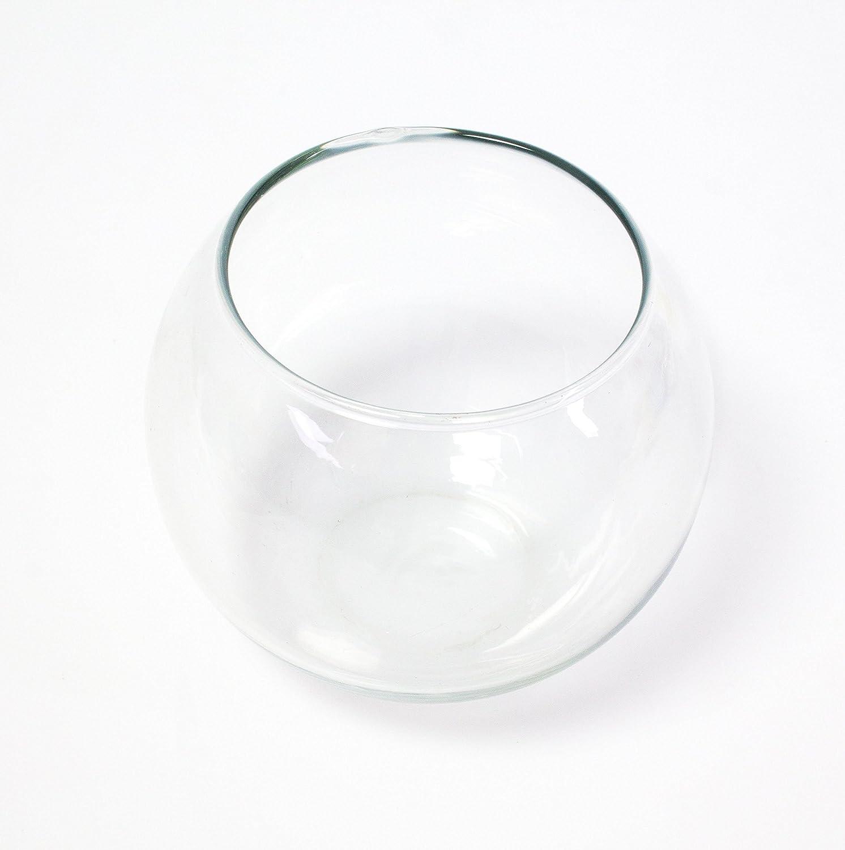 INNA Glas Jarrón Redondo - Maceta Decorativa Tobi, Transparente, 10 cm, Ø 11,5 cm - Recipiente de Cristal/Portavelas: Amazon.es: Hogar