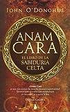 Druidas: El espíritu del mundo celta (Historia): Amazon.es