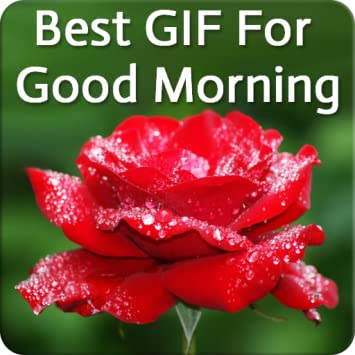 Amazoncom Gif For Good Morning Appstore For Android