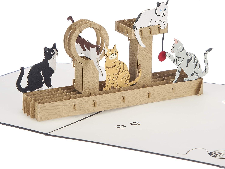 Cardology - Tarjeta hecha a mano con diseño de gatos desplegable, para cumpleaños o Día de la Madre: Amazon.es: Oficina y papelería