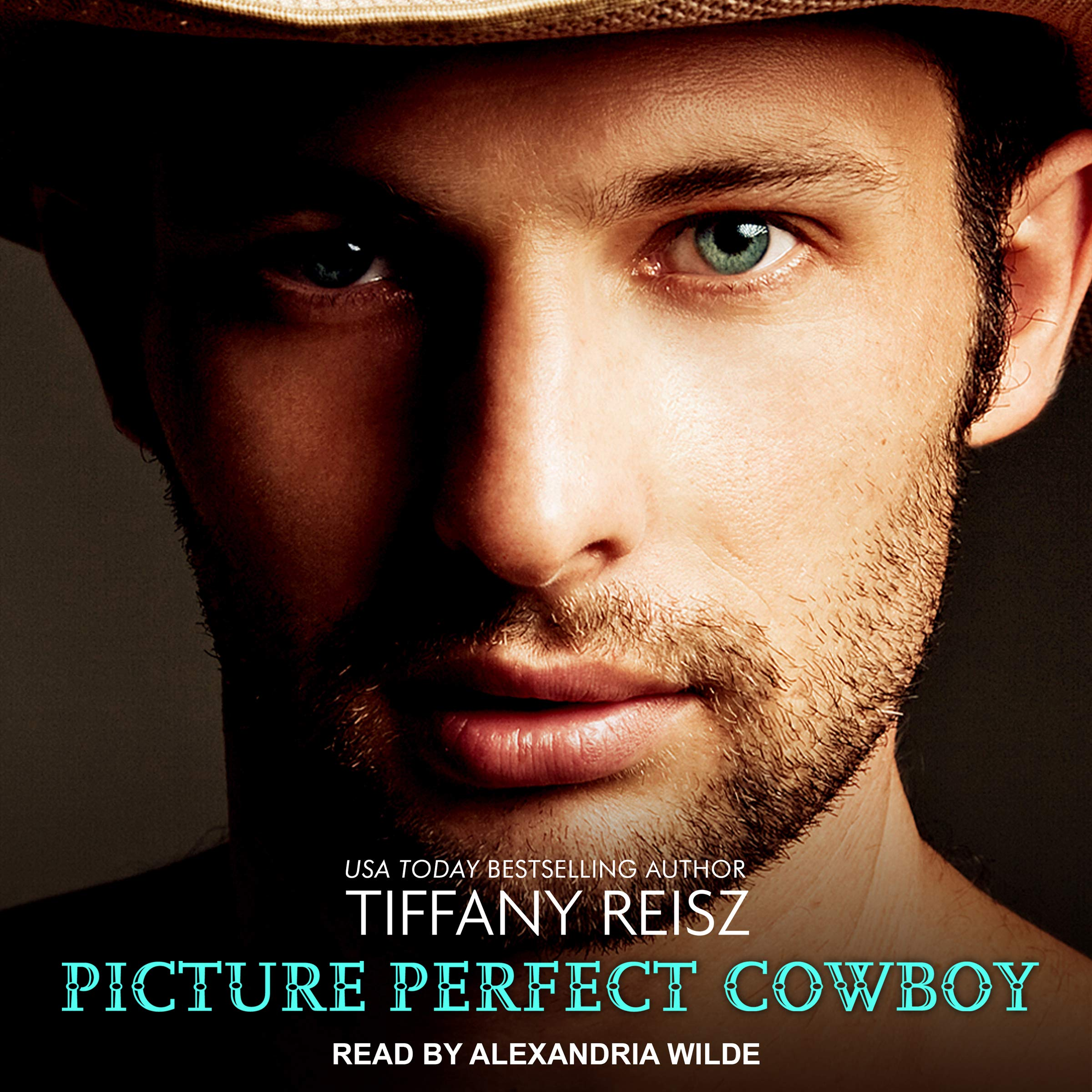 Picture Perfect Cowboy: The Original Sinners Series, Book 10