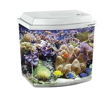 Haquoss - Acuario BLU 3.8, Medidas de 21,6 x 15,6 x 20,8 (Alto) cm, 3,8 litros, Blanco: Amazon.es: Productos para mascotas