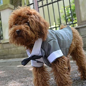Amazon.com: Lovelonglong - Traje de tuxedo formal para perro ...