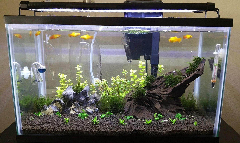 Nicrew illuminazione per acquario plafoniera led acquario dolce