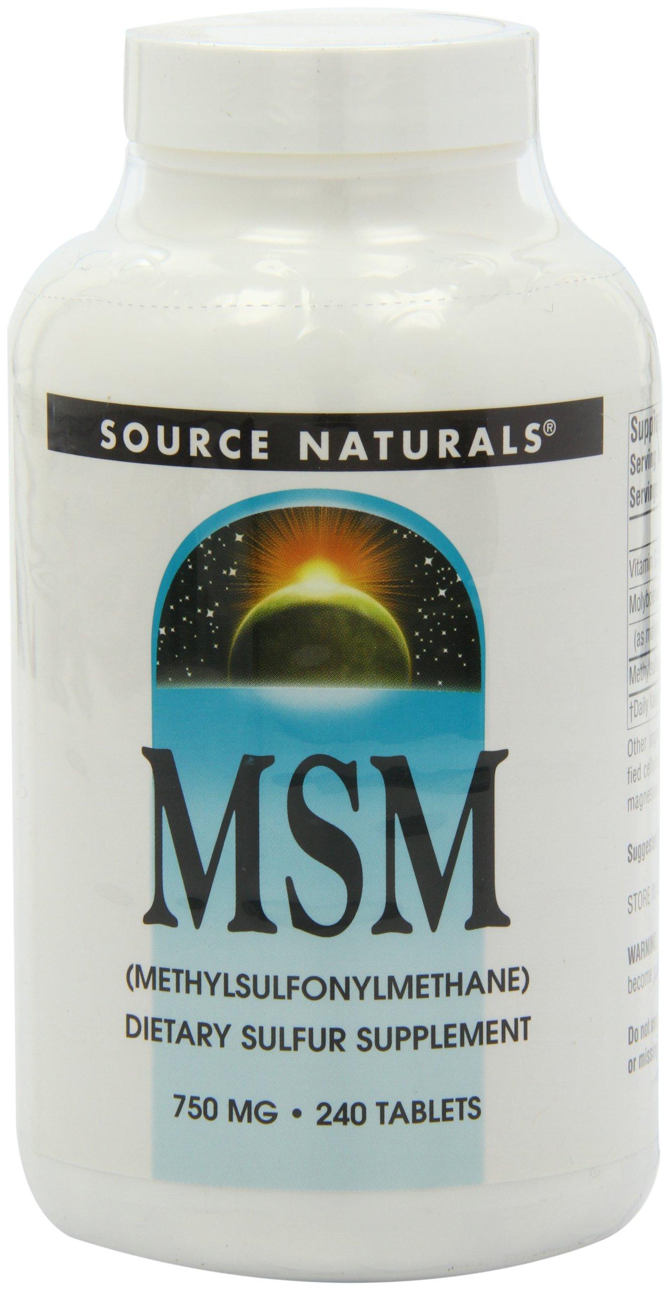 Source Naturals MSM (methylsulfonylmethane), 750mg, 240 Tablets