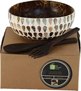 Go Planet First Coconut Bowl mother of pearl with spoon and fork set. Coco bowl for food, kitchen decor, key and accessories holder, jewelry dish, succulents. Great gift!