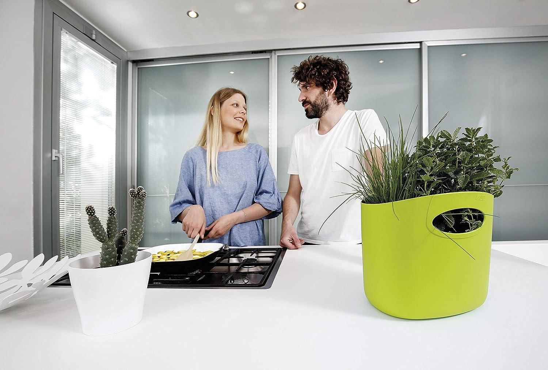 GF Garden FOR 2 Everyday Bolso de pl/ástico Verde con asas contenedor colorido