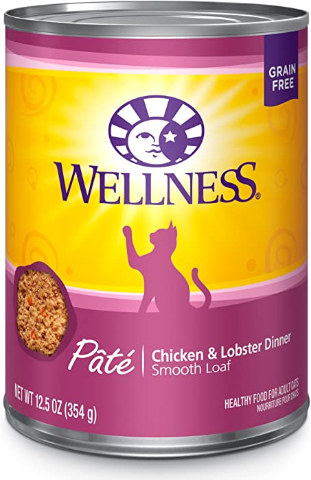 Top 10 Wellness Complete Cat Food Pate