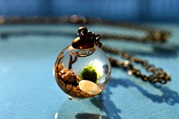 A Thousand Wishes Live Marimo Moss Ball Terrarium Necklace 101