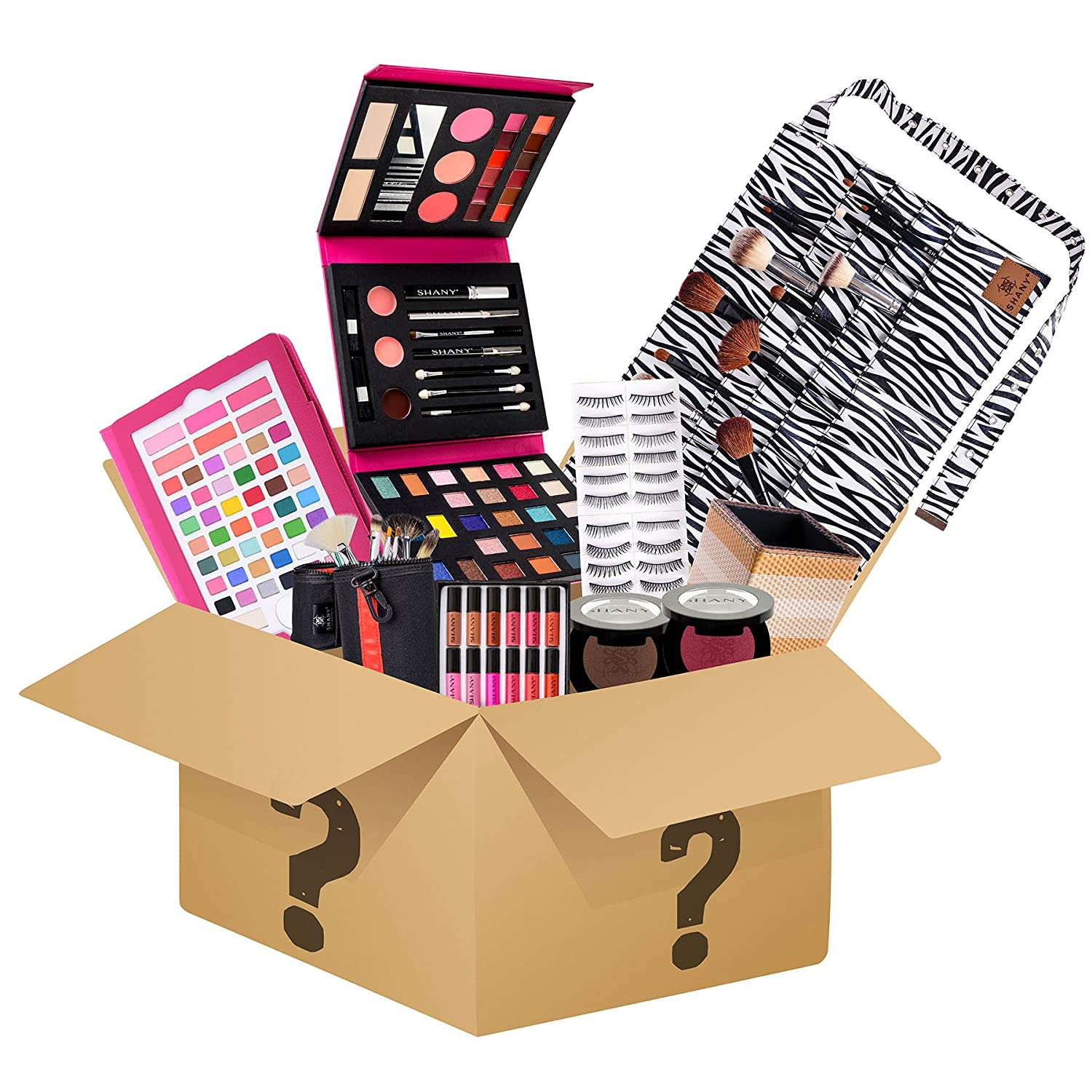 Amazoncom Shany Holiday Surprise  Exclusive All In One Makeup