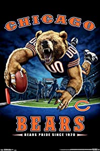 Trends International NFL Chicago Bears - End Zone 17 Wall Poster, 14.725