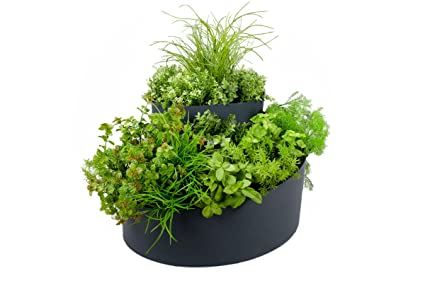 Amazon.com : VYTAL Spiral Herb Garden Planter 21.5\