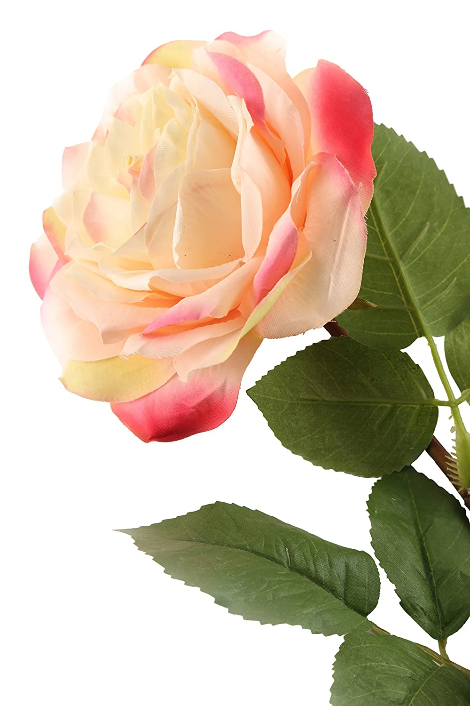 Floral Elegance künstlichen 92cm Single Stem komplett geöffnet creme und rosa Rosen x 12–Luxus Silk Flower Range