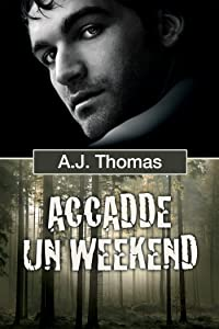 Accadde un weekend (Serie Colleghi improbabili Vol. 1) (Italian Edition)
