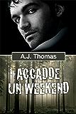 Accadde un weekend (Serie Colleghi improbabili Vol. 1)