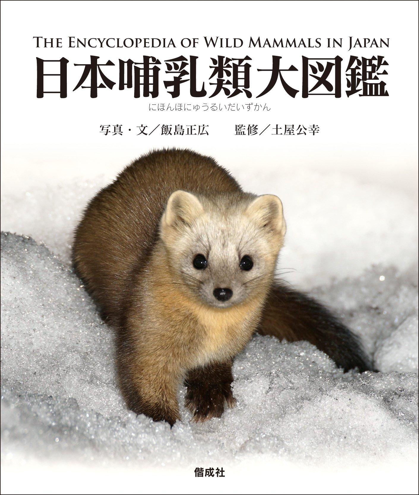 日本哺乳類大図鑑 | 飯島正広, ...