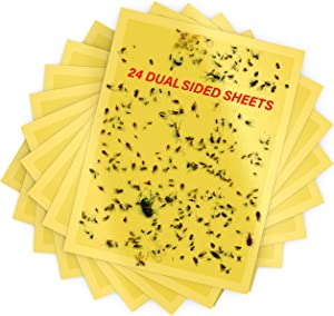 Dual-Sided Yellow Sticky Traps 6 x 8 inch- Sticky Traps for Fungus Gnat, Flies , Aphids, Leaf Miners, Whiteflies, Thrips and Other Flying Insects 24 Pieces