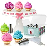 Cupcake Decorating Kit - The Perfect Cupcake By Love2bake -X-Large Stainless Steel Tips & Icing Bags
