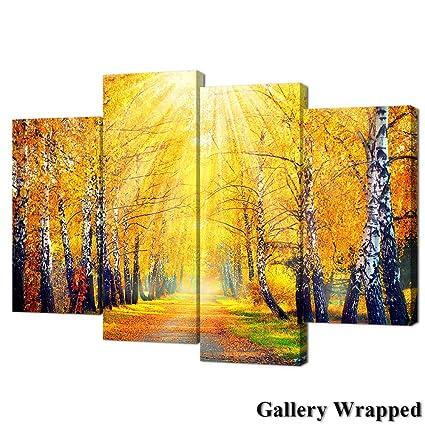 Amazon.com: VVOVV Wall Decor - Sunrise Birch Tree Forest Canvas ...