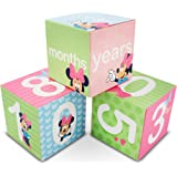 Disney Mickey Or Minnie Mouse Milestone, Baby Age Blocks for Photo Prop