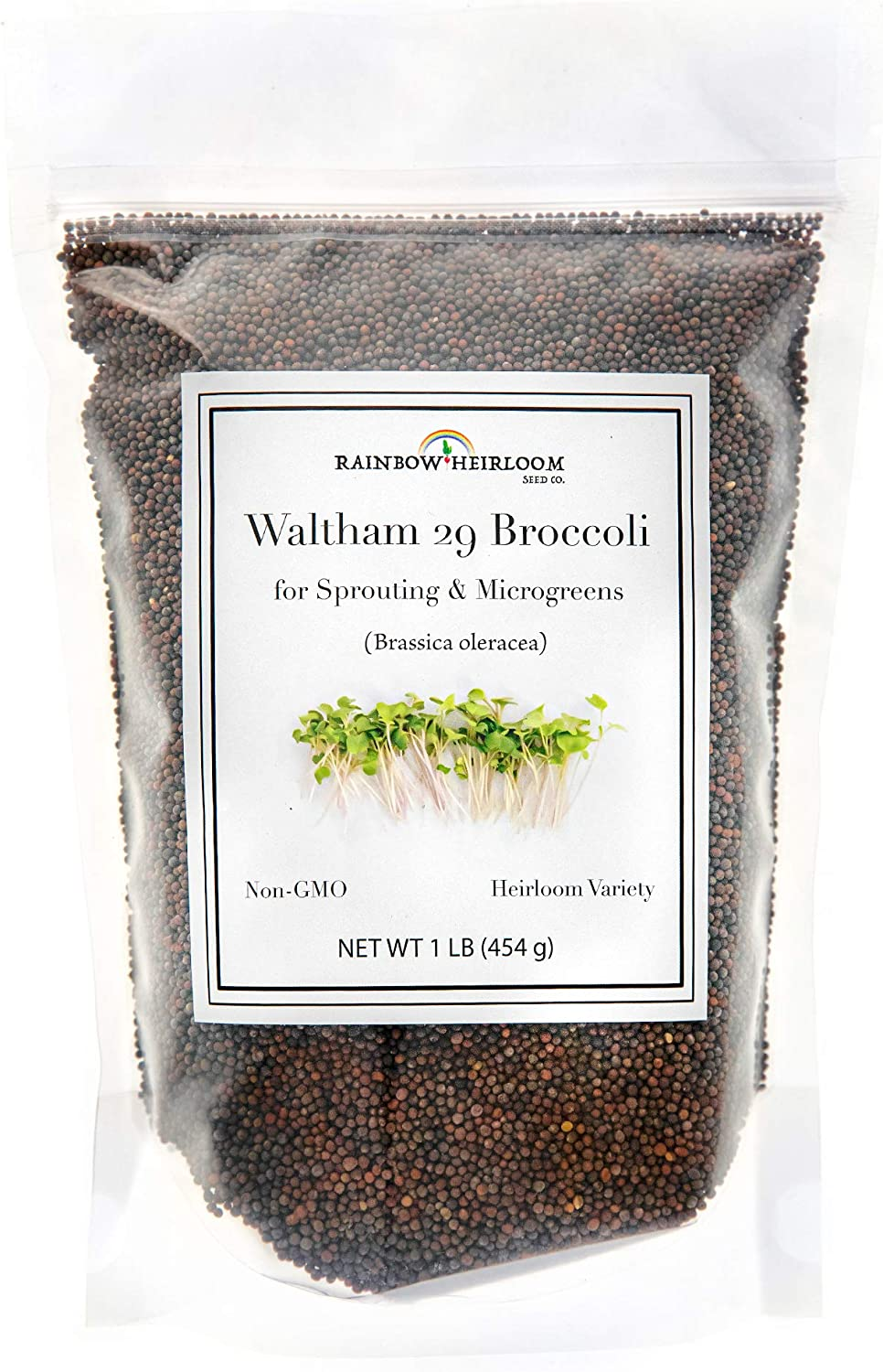 Growing Broccoli From Seed