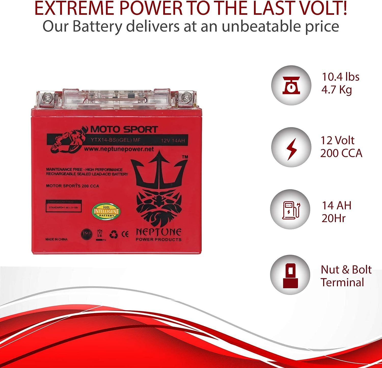 Amazon.com: YTX14-BS Batería de GEL de alto rendimiento para ...