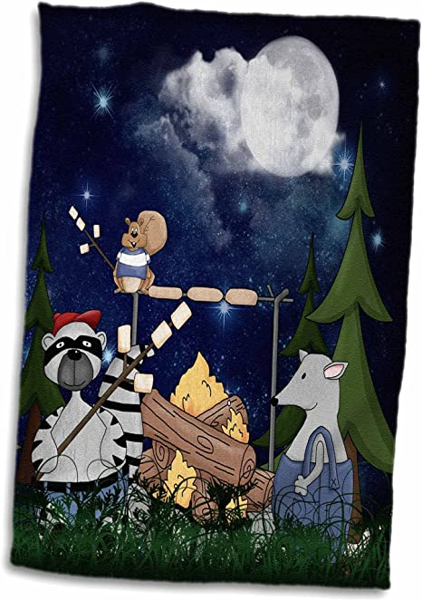 3d Rose Raccoon Squirrel And Opossum Camping With A Campfire And Marshmallows Hand Sports Towel 15 X 22 Home Kitchen