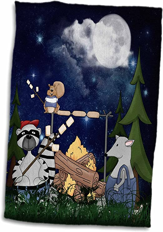 3d Rose Raccoon Squirrel And Opossum Camping With A Campfire And Marshmallows Hand Sports Towel 15 X 22 Home Kitchen Amazon Com