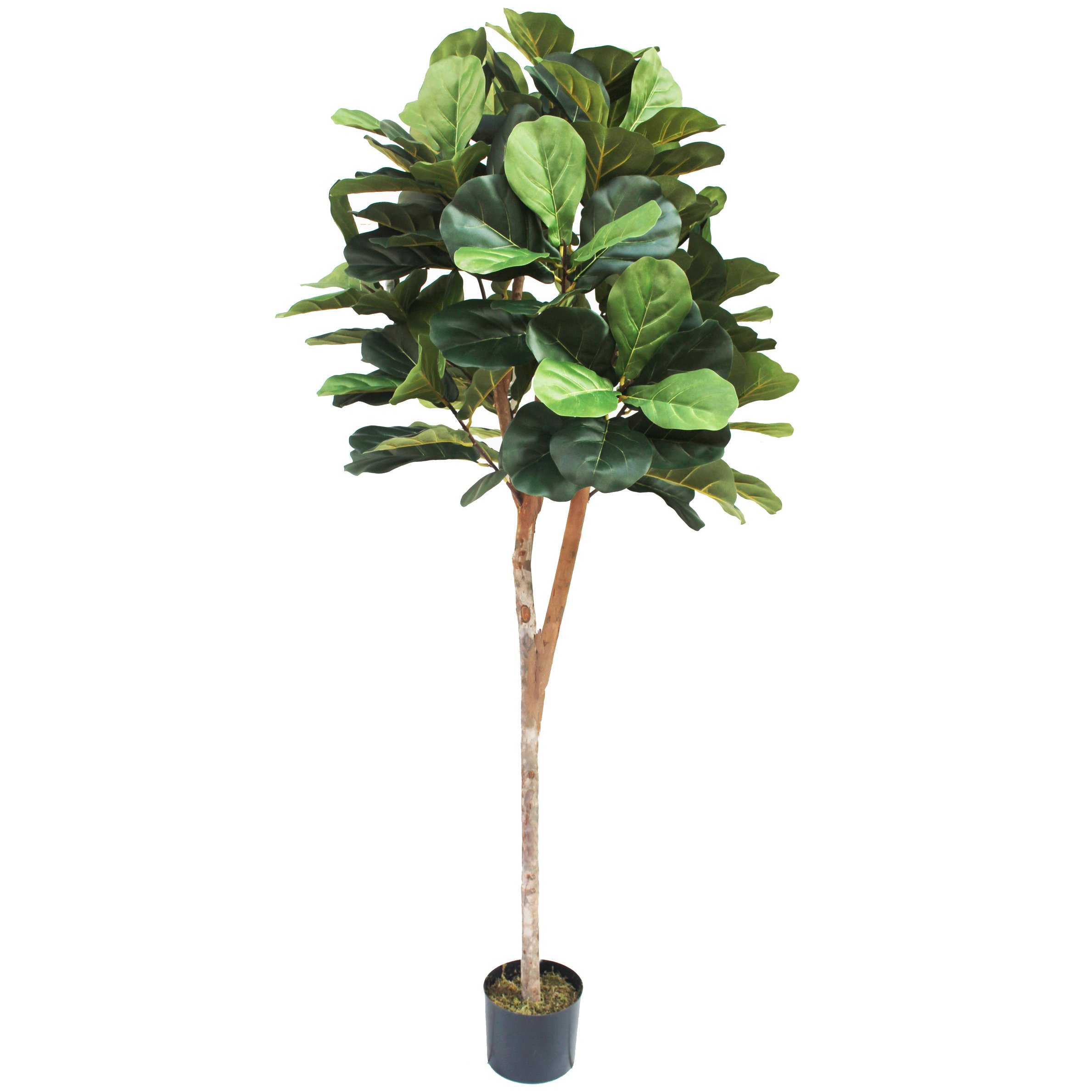 6' Fiddle Leaf Fig Ball-Shaped Topiary Silk Tree w/Pot -Green
