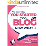 You Started a Blog - Now What....?: 6 Steps to Growing an Audience, Writing Viral Blog Posts & Monetizing your Blog (Beginner