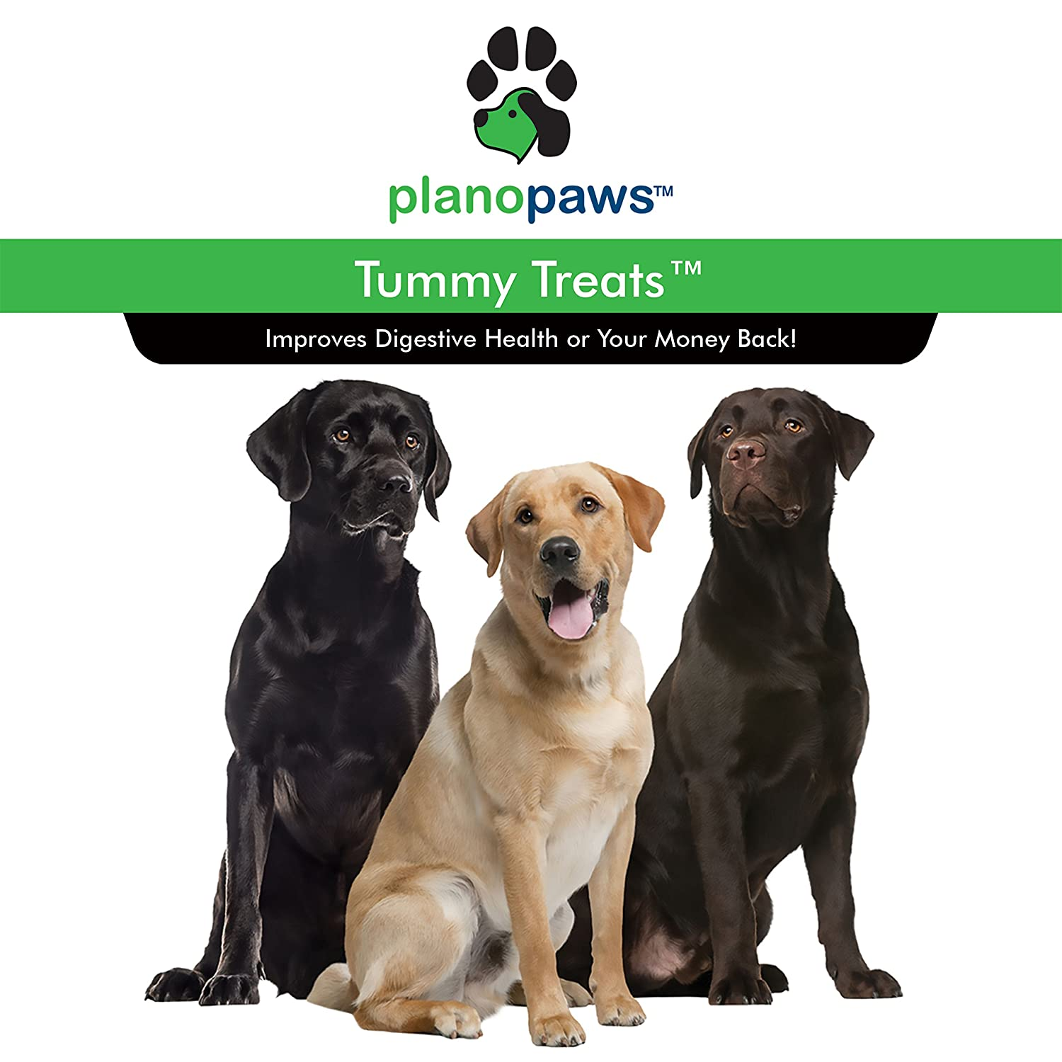 Safe All Natural Dog Probiotics Digestive Enzymes For Dogs Relieves Allergies Hot Spots