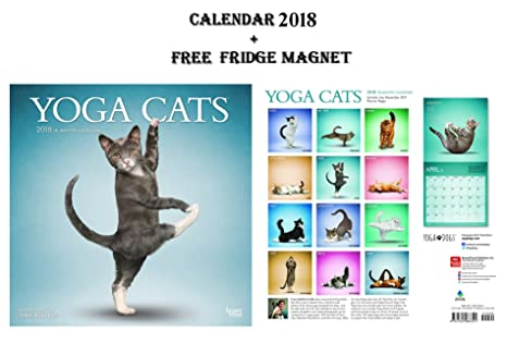 Yoga gatos 2018 oficial calendario 2018 + Celebrity imán para nevera