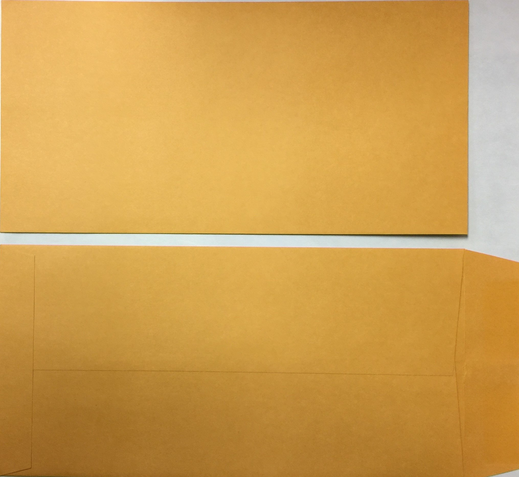 License Plate Envelopes (Blank) 500 Quantity LPEV Moist & Seal (P2) by A Plus