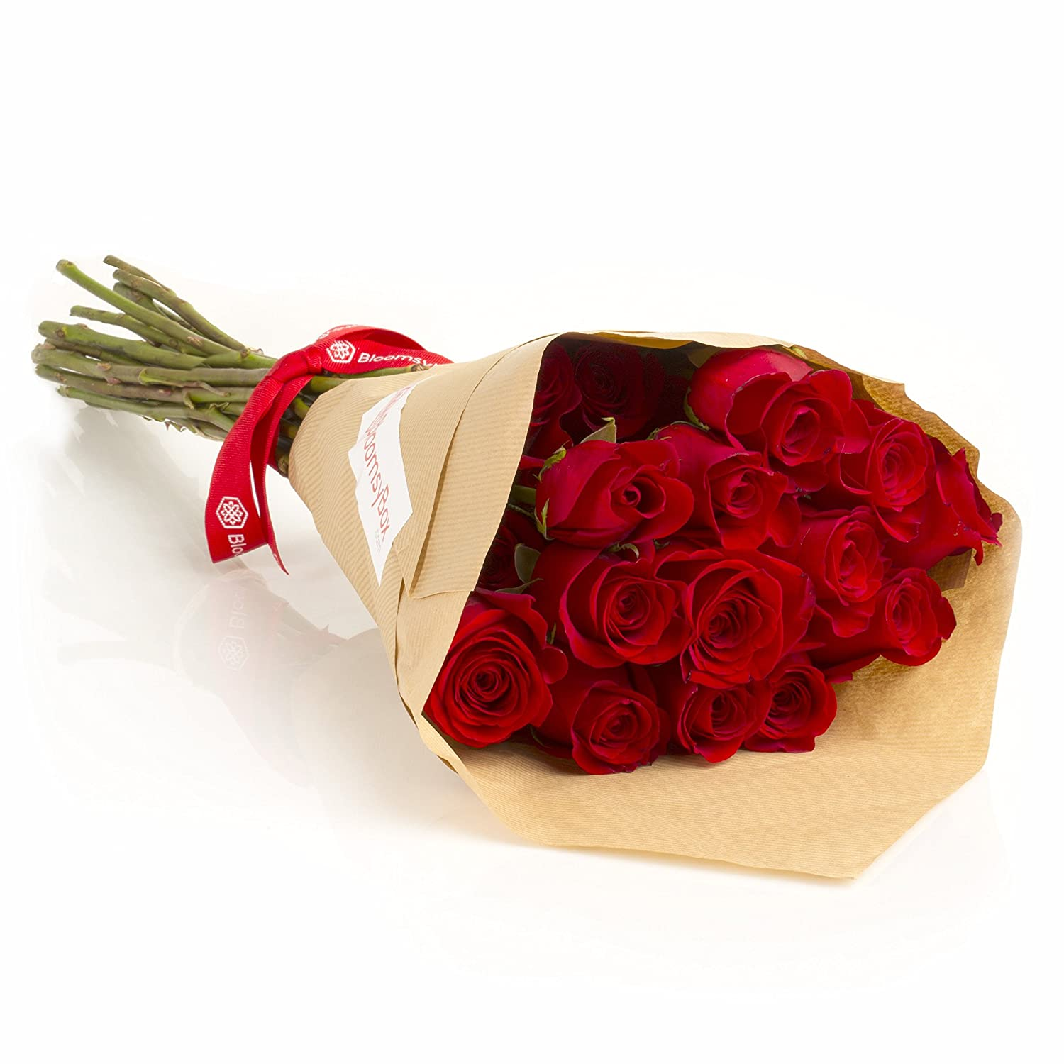 Amazon.com : 24 Long Stem Red Roses Hand-tied Bouquet -No Vase ...