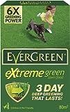 EverGreen Extreme Green Carton, 2.8 kg