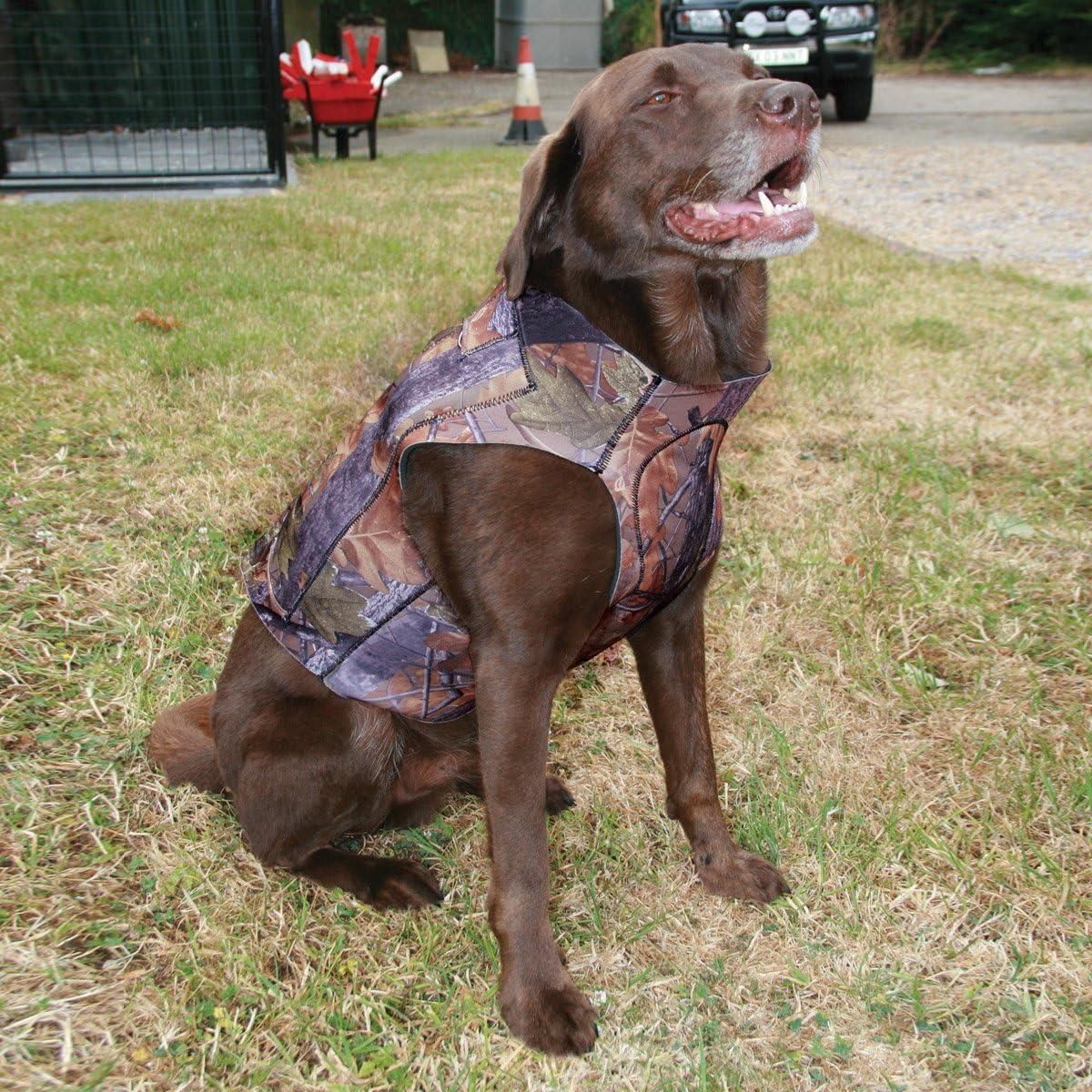 Jack Pyke Gen 2 lavoro in neoprene Technical Dog Vest Verde Oliva 1st Class Post