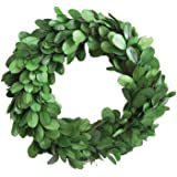 Creative Co-Op Small Round Preserved Boxwood Wreath