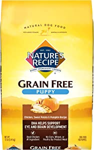 Nature's Recipe Grain Free Puppy Dry Dog Food, Chicken, Sweet Potato & Pumpkin