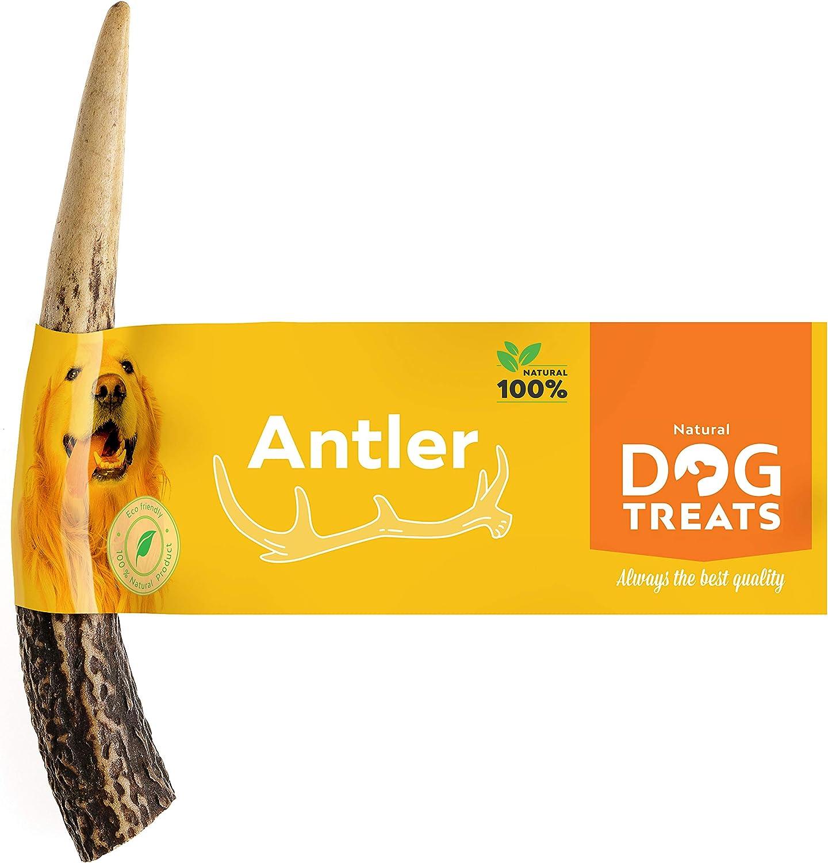 100% Natural Asta de Ciervo para Perro Cuerno Masticar Hueso Juguete, Tamaño Small