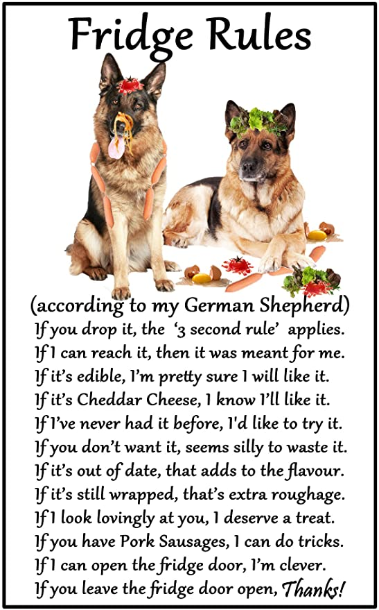 GERMAN SHEPHERD House Rules for Non Pet Owners Funny Fridge Magnet
