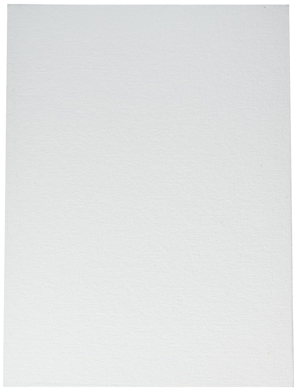 Winsor /& Newton Artists Canvas Board 16 x 20