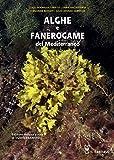 Alghe e fanerogame del Mediterraneo