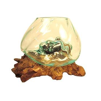 Molten reciclado soplado a mano espiral cristal madera raíz terrario jarrón pecera: Amazon.es: Jardín