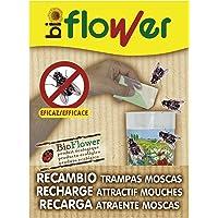 Flower 70543 - Flower 70543 - Paquete